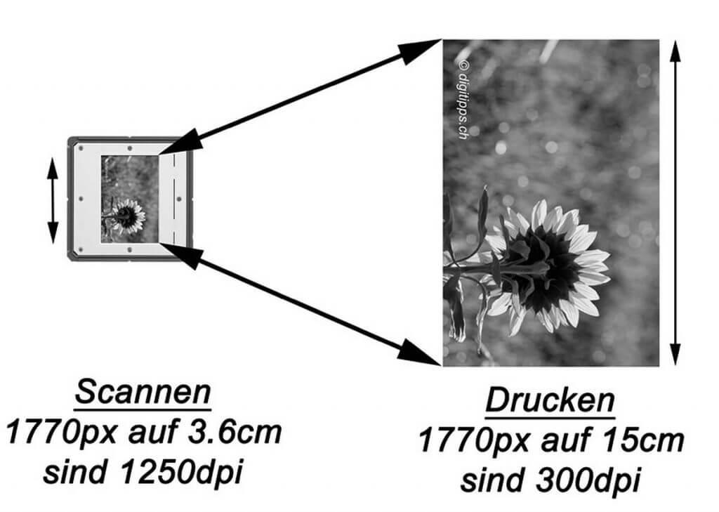 Einscannen von Dias oder Negativen in welcher Auflösung? - auflösung dias und negative scannen