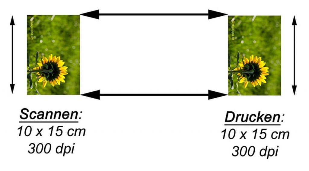 Fotos 1:1 für einen Fotoausdruck scannen