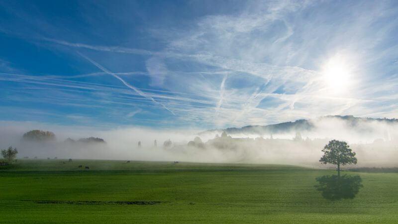 Nebelstimmung im Gegenlicht - hyperfokale Distanz