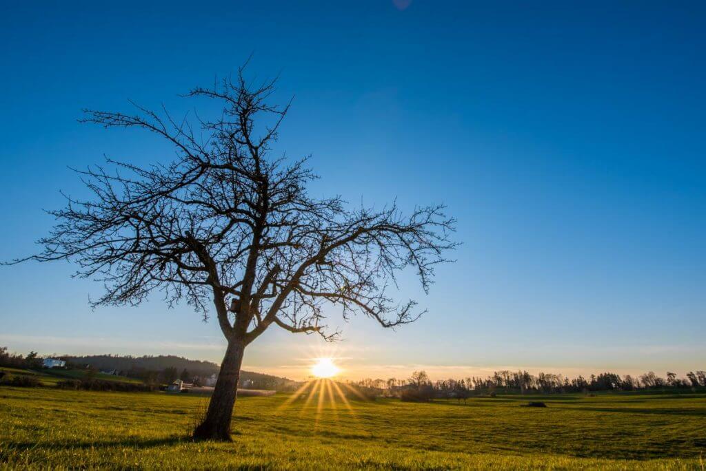 Sonnenuntergang - hoher Dynamikumfang
