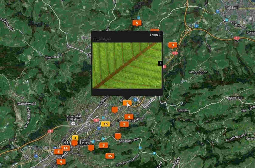 Übersicht der Fotos mit GPS-Tag
