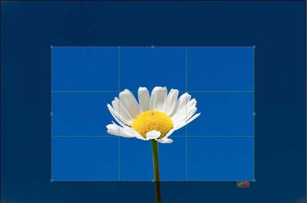 Vergleich Bildausschnitt Kleinbildformat und Halbformat - Vollformat oder Halbformatkamera kaufen