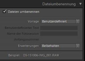 Dateien in Lightroom umbenennen