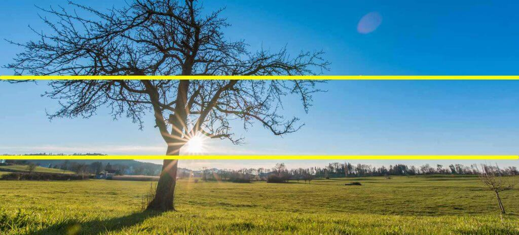 Drittel Regel Landschaftsaufnahmen - Baum im Gegenlicht