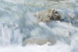 Fliessspuren von Wasser - 1/15s Verschlusszeit