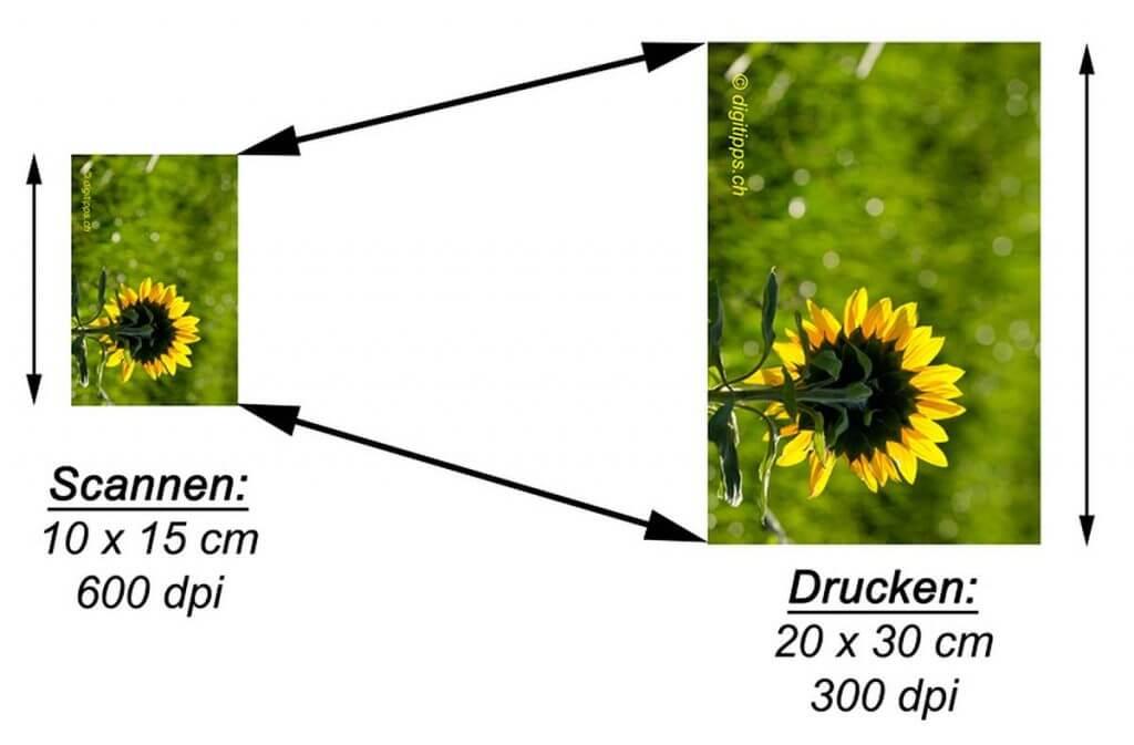 Fotos 2:1 für einen Fotoausdruck scannen - mit welcher Auflösung Fotos oder Bilder einscannen