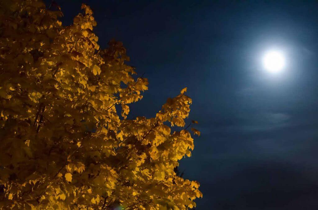 Nachtaufnahme mit Rauschunterdrückung