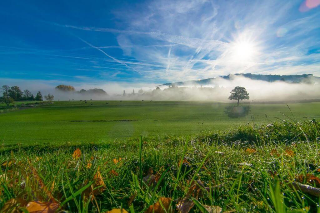 Abblenden - Nebellandschaft im Morgenlicht