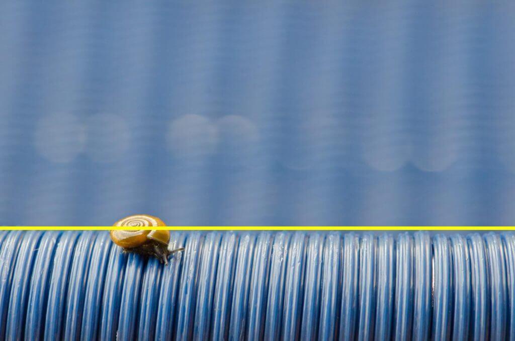 Schnecke auf blauem Stuhl - Drittel Regel
