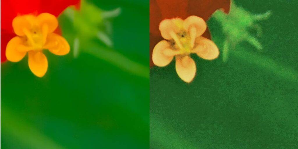 warum im RAw-Format fotografieren