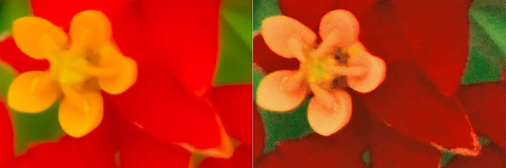 Vergleich korrigiertes RAW-Bild links, JPG rechts