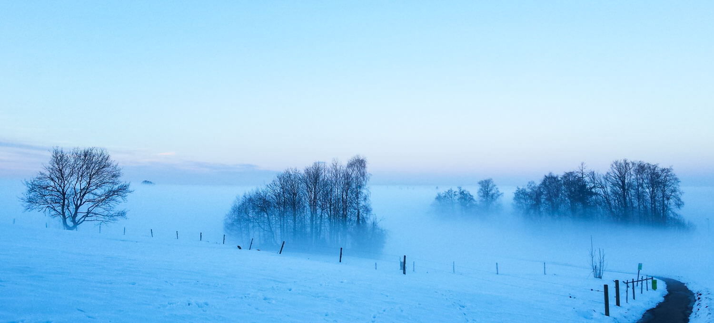 Nebelstimmung in der Dämmerung