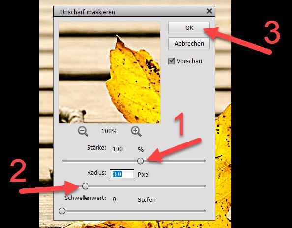 Werkzeugeinstellungen unscharf maskieren in Photoshop Elements