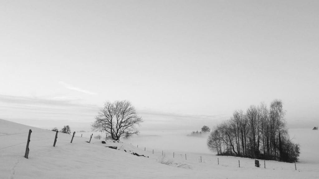 Unterschiedliche Bildwirkung der Schnee- und Nebellandschaft durch anderen Bildausschnitt