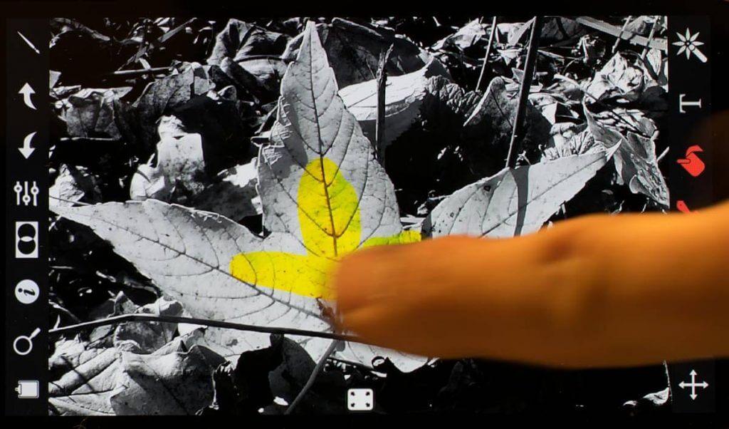 Mit dem Finger die Farbe ins Bild zurückbringen. Spass mit ColorSplash