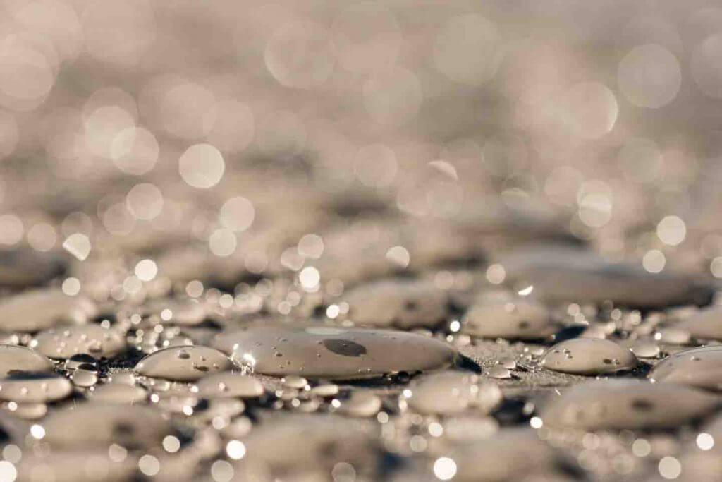 Wassertropfen im Gegenlicht - Tipps für den Kamerakauf