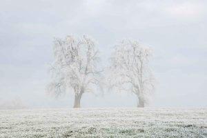 Lichtverhältnisse ändern schnell - Nebelfotografie
