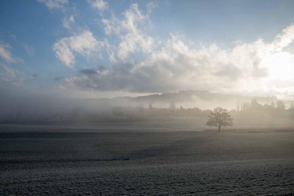 Nebel erobert zurück