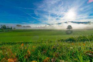 Nebelstimmung am frühen Morgen
