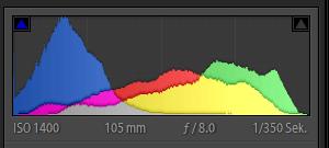 beschnittenes RGB-Histogramm Palmblatt
