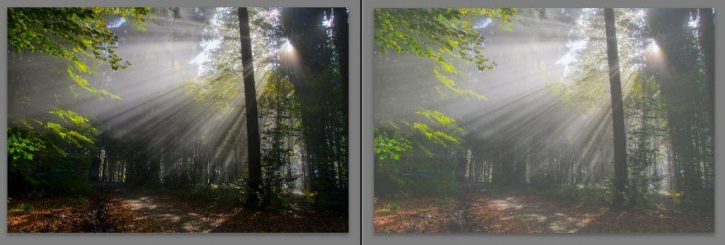 Originalbild links und Nebeleffekt rechts