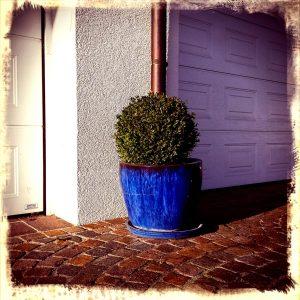 Pflanzentopf vor Garage