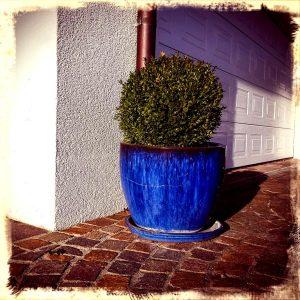 Pflanzentopf vor beleuchtetem Garagentor