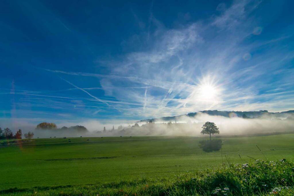 Nebelstimmung in Mörschwil
