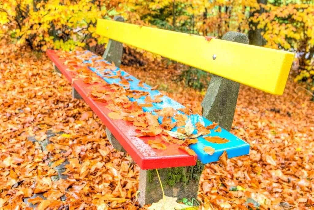 Der Herbst zieht ein - Matrixmessung