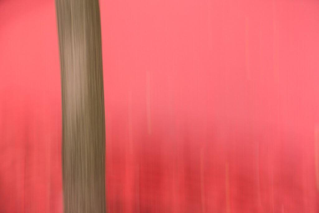 Malen mit der Kamera - roter Platz in St Gallen