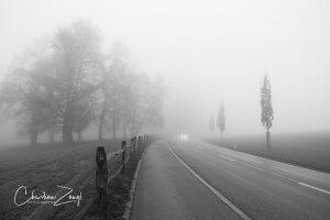 Nebelfoto am Abend in Mörschwil