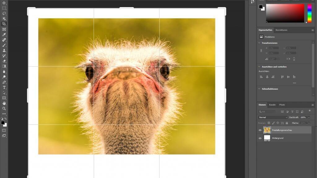 Wie mache ich einen Rahmen um ein Bild